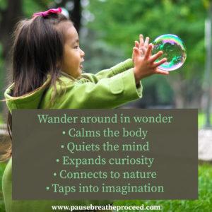 Wander around in Wonder